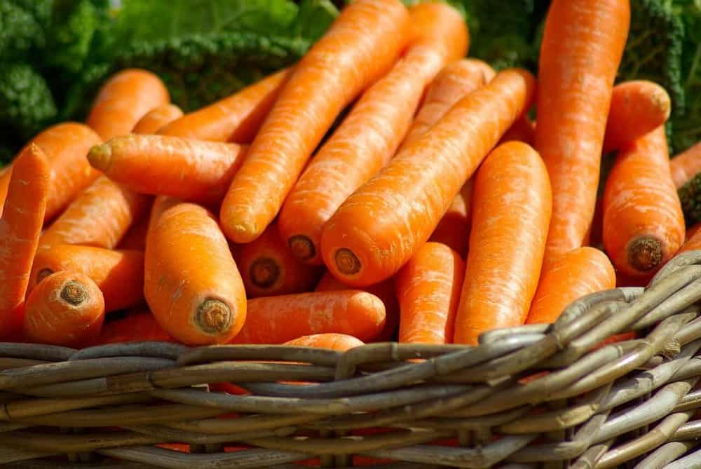 zero-calorie-foods-carrots