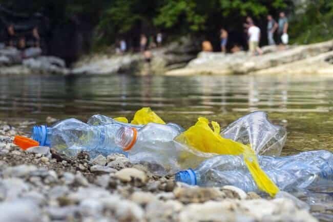 Best fruit infused water bottles - prevent plastic pollution