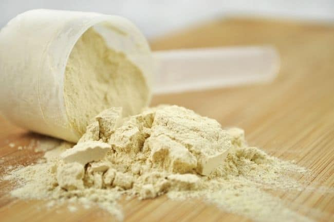 Best plant based protein powder for weight loss